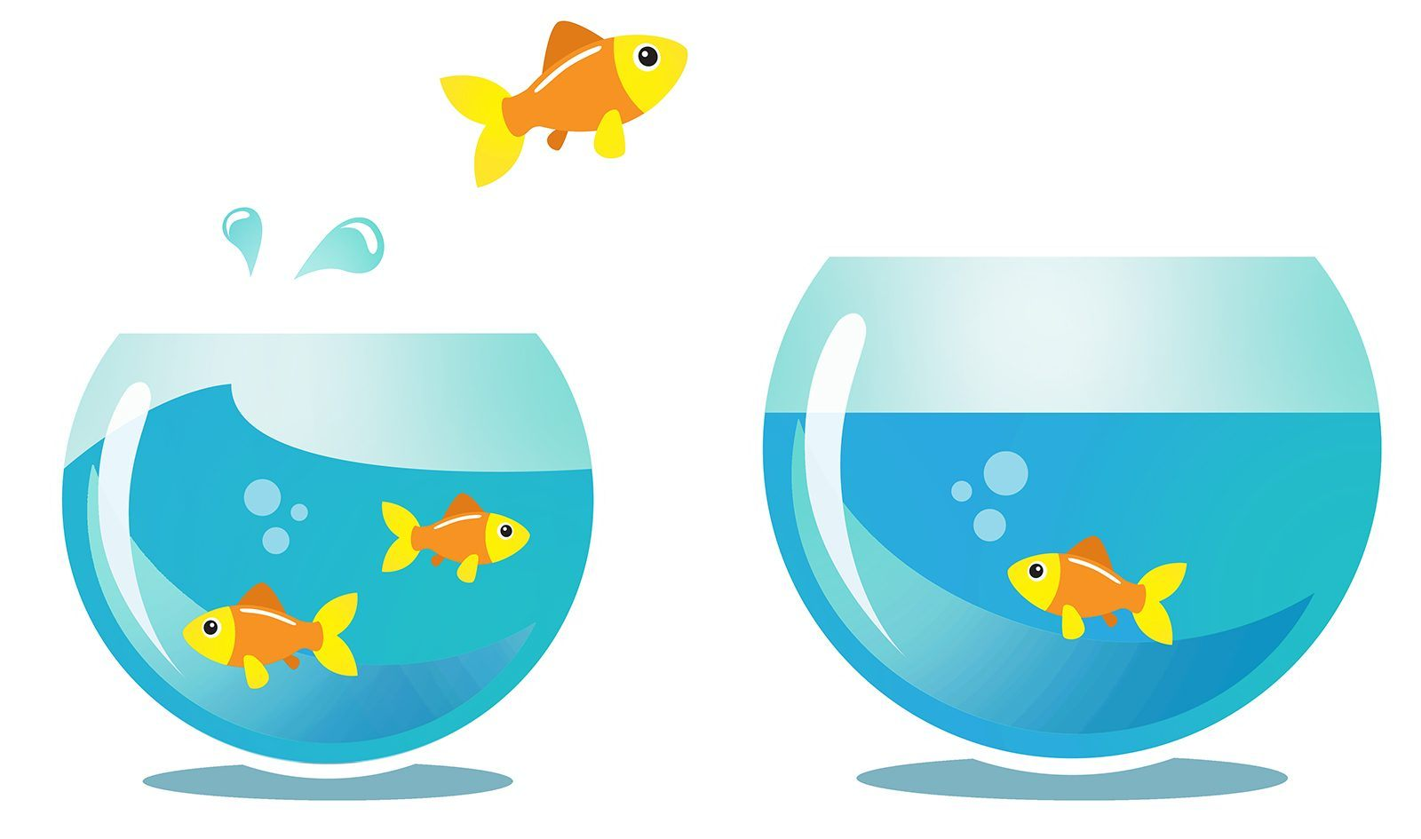 An illustration of a goldfish leaping after clearing limiting beliefs